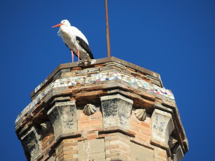 http://www.noticiasespiritas.com.br/2013/JANEIRO/28-01-2013_arquivos/image030.jpg
